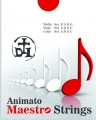 Maestro  A Strings for cello