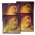 Evah Pirazzi Gold Viola Strings Set