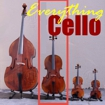 Cello the second langest member of the violin family