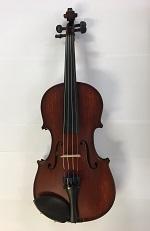 gliga-violin.jpg