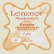 lenzner-cello-strings.jpg