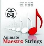 maestro-viola-strings.jpg