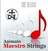 maestro-violin-strings.jpg
